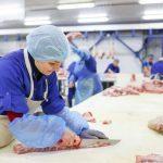 Pautas de higiene personal en la industria alimentaria